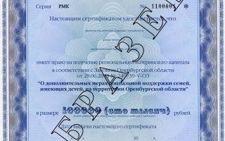 Региональный материнский капитал в оренбурге в 2020 году