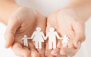 Социальная поддержка в курской области — виды помощи