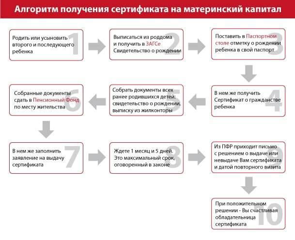 Как восстановить сертификат на материнский капитал в 2020 году