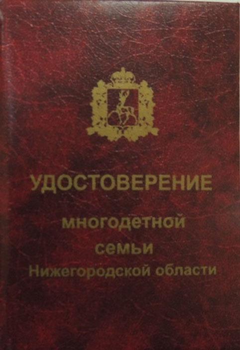 Пособия на ребенка в Нижегородской области и Нижнем Новгороде в 2020 году