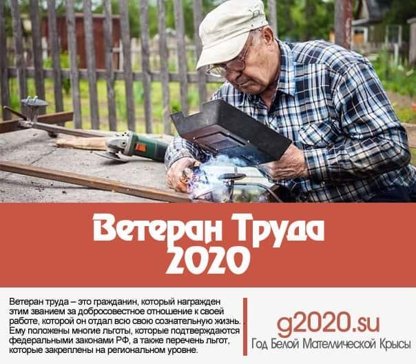 Как получить звание ветеран труда пенсионеру МВД в 2020 году