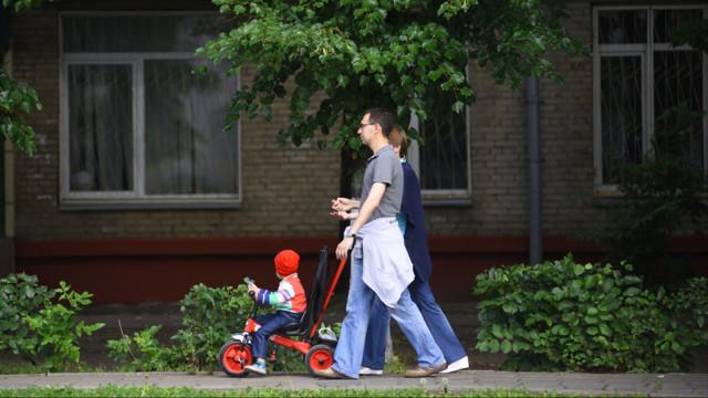 Льготы для многодетного отца: размер, как получить, заявление