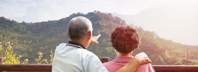 Как начисляются пенсионные баллы ИП и самозанятым лицам в 2020 году