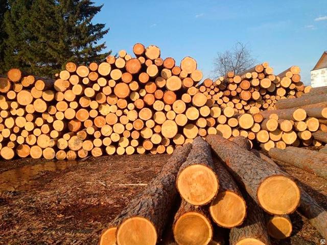 Как получить бесплатный лес на строительство и ремонт дома в 2020 году