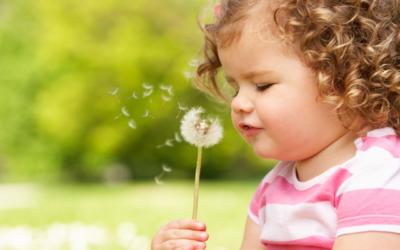 Социальная помощь и поддержка детям-сиротам в 2020 году